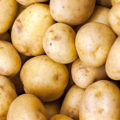 Uskladnění brambor
