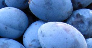 Praktické rady pro uskladnění ovoce a zeleniny